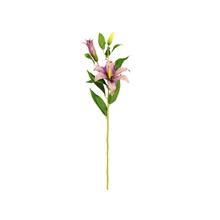 Lírio Casablanca Rosa Claro 90cm