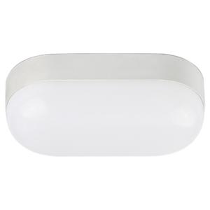 Luminária Tartaruga LED 8W Luz Branca Blumenau