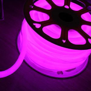 Mangueira LED Neon Luz Rosa 3m 127V (110V)