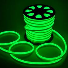 Mangueira LED Neon Luz Verde 3m 127V (110V)