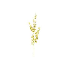 Orquídea Chuva de Ouro Amarela 103cm