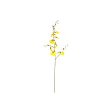Orquídea Chuva de Ouro Amarela 98cm