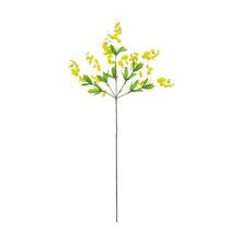 Orquídea Dançante Haste 70cm