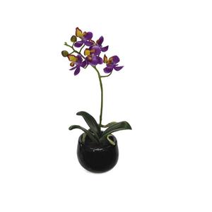 Orquídea Phalaenopsis Lilás Vaso 23cm