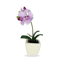 Orquídea Phalaenopsis Lilás Vaso 26cm