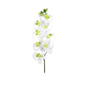 Orquídea Primavera Branca Haste 72cm