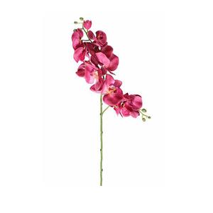 Orquídea Primavera Rosa Haste 72cm