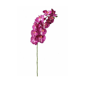 Orquídea Primavera Roxa Haste 72cm