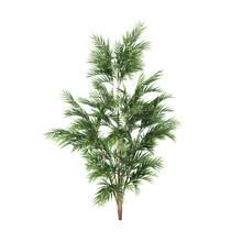 Palmeira 9cm