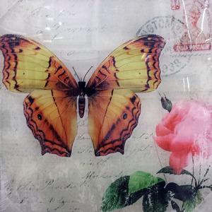 Placa Borboletas 30x30cm