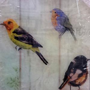 Placa Pássaros 30x30cm
