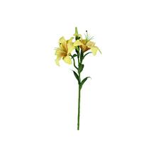 Lírio Tigrado Amarelo 61cm