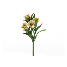 Astromélia Amarelo 35cm