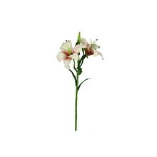 Lírio Tigrado Rosa 61cm