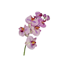 Orquídea Phalaenopsis Lilás 77cm