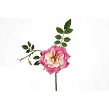 Rosa Claro 32cm