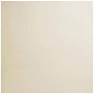 Porcelanato Brilhante Borda Reta Ivory White 60x60cm Platinum