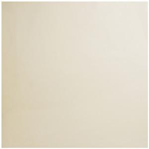 Porcelanato Brilhante Borda Reta Ivory White 80x80cm Platinum