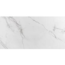 Porcelanato Esmaltado Polido Interno 59x118,2cm Place Eliane