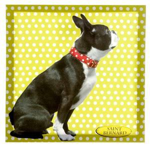 Pôster Canvas Dog Amarelo 40x40cm Importado