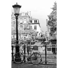 Pôster Painel Bike Holand 260x183cm