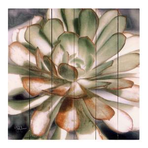 Quadro Floral Verde Sem Moldura 30x30cm
