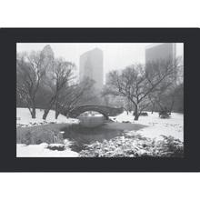 Quadro NY Central Park 39x29cm