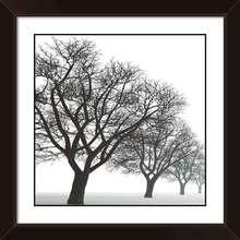 Quadro Outono White 29x29cm