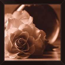 Quadro Rose Drama 29x29cm