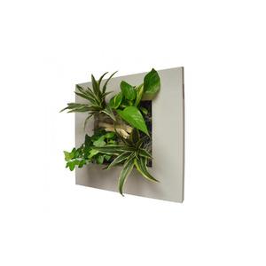 Quadro Vegetal Pvc 17x17cm Branco