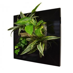 Quadro Vegetal Pvc 31x31cm Preto