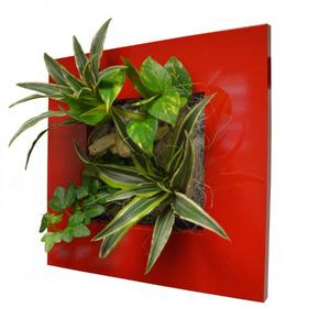 Quadro Vegetal Pvc 31x31cm Vermelho