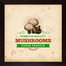 Quadro Vintage Mushrooms 28x28cm