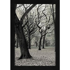 Quadro Winter Trees 24x34cm