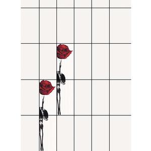 Revestimento Comprimento 66,00 Cm Largura 33,00 Cm Kit Retificado Decorado Red Rose Branco Caixa C/4 Pecas 16,54 Kg