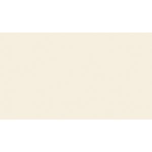 Revestimento de Parede Acetinado Borda Reta 31961 31x55cm Artens