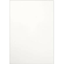 Revestimento de Parede Borda Reta 29x59cm Super Bianco Pamesa