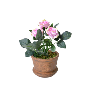 Rosa Vaso 20cm