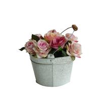 Rosas Vaso Aluminio 15cm