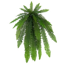 Samambaia Verde Pendente 100cm