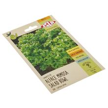 Semente Alface Mimosa (Salad Bowl) Isla Sementes
