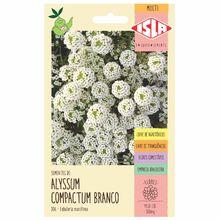 Semente Alyssum Compactum Branco Isla Sementes