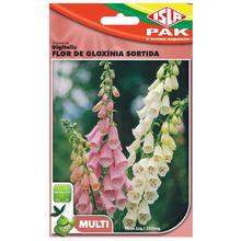 Semente Digitalis Flor de Gloxinia Sortida Isla Sementes