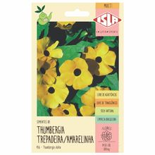 Semente Thumbergia Trepadeira/Amarelinha Isla Semenets