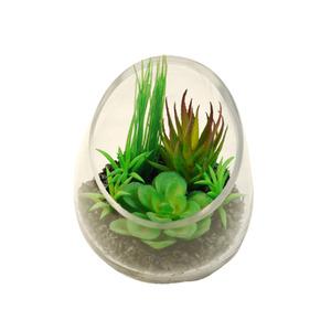 Suculenta Verde Vaso 13cm