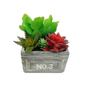 Suculenta Verde Vaso 16cm