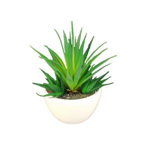 Suculenta Verde Vaso com Imã 18cm