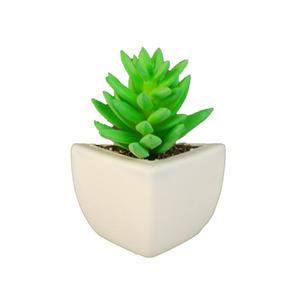 Suculenta Verde Vaso com Imã 9cm