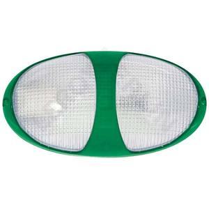 Tartaruga ARXPlástico e Policarbonato Oval Verde Baxton
