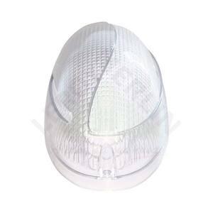 Tartaruga EccentricPlástico e Policarbonato Oval Transparente Baxton